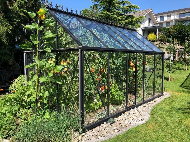 Build a DIY Greenhouse